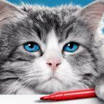 10 фильмов о животных