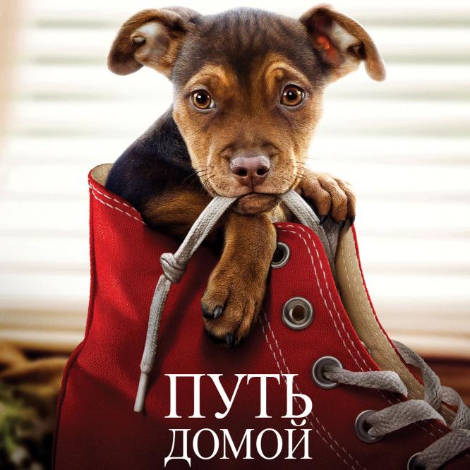 Путь домой (A Dog's Way Home)