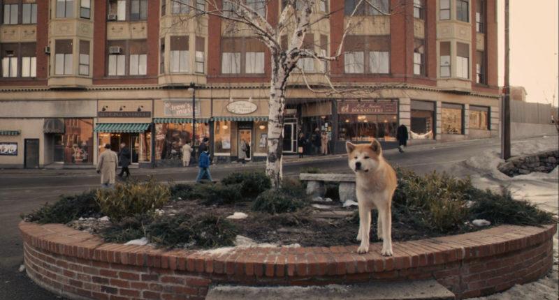 Хатико: Самый верный друг (Hachi: A Dog's Tale)